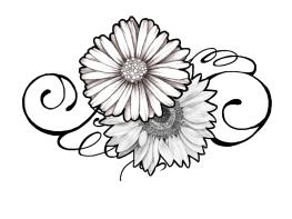 delia-graphic