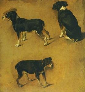Studies of a Dog Adrian van de Velde (2)